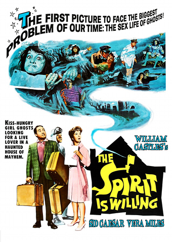 The Spirit Is Willing DVD