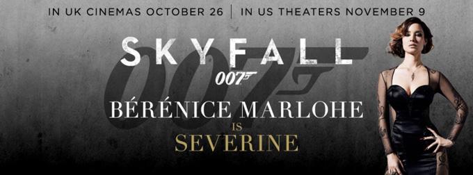Skyfall Banner
