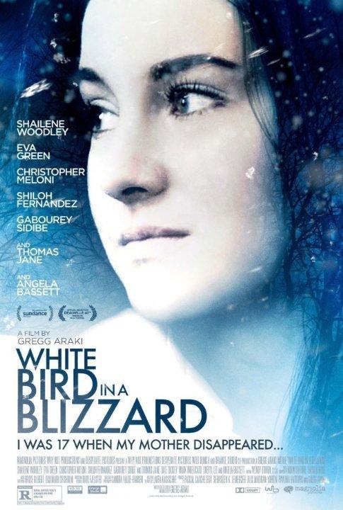 White Blizzard, poster