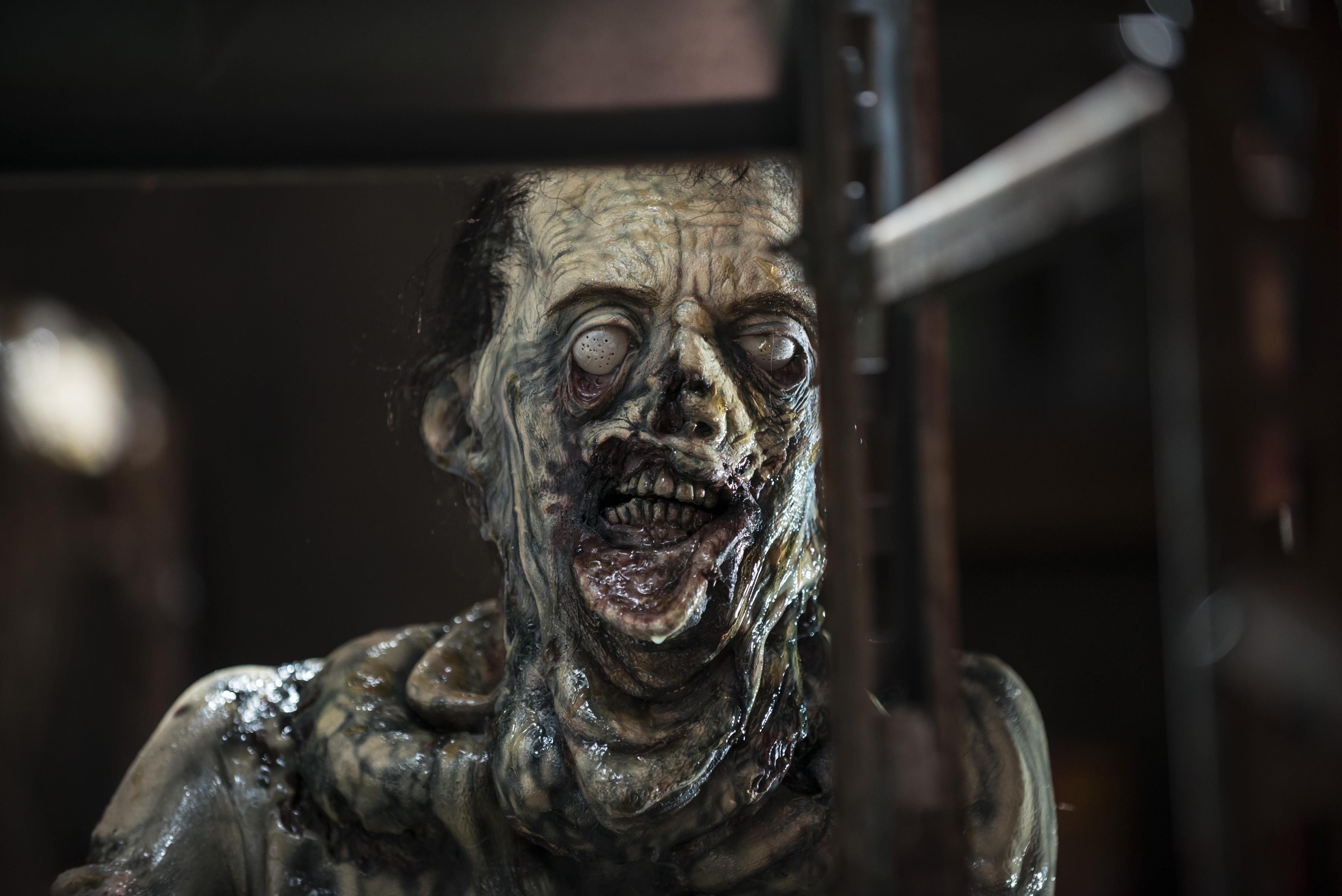 Already far Walking dead zombies valuable information