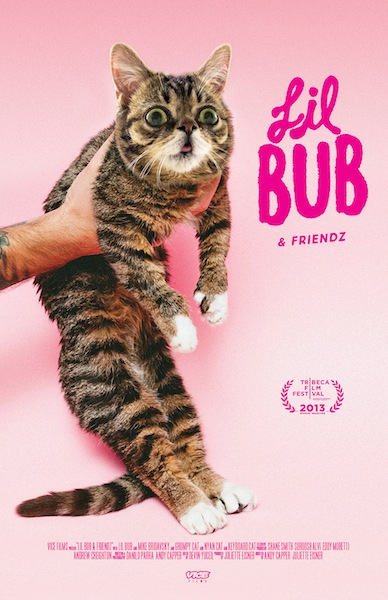 Lil Bub poster 1