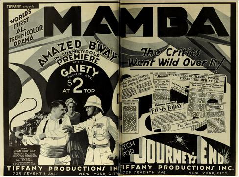 Mamba Ad-488