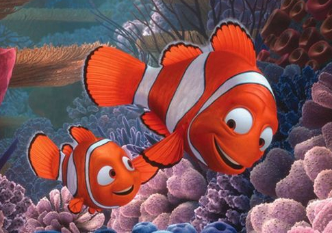 finding nemo overcoming fear and the When finding nemo was  a bunch of theories i find simple  fish who must go on a personal journey as he tries to overcome the pain and fear caused by the.