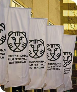 rotterdam film festival awards
