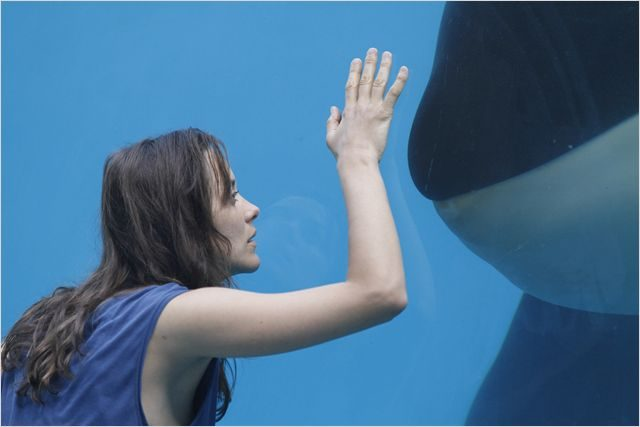 Marion Cotillard Rust And Bone skip crop