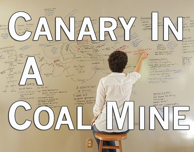 Canary in a Coal Mine still