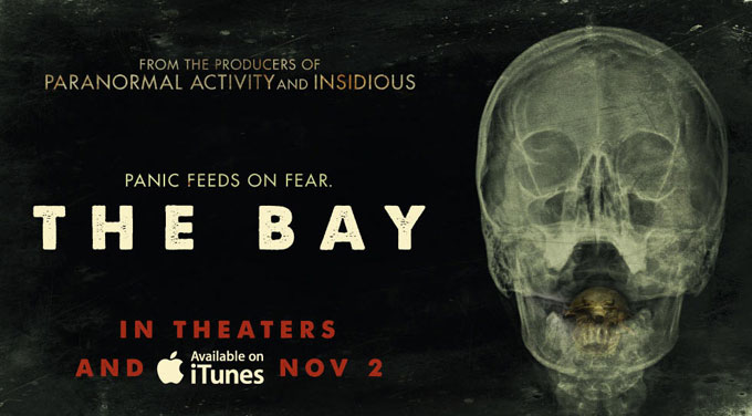 The Bay Promo skip crop