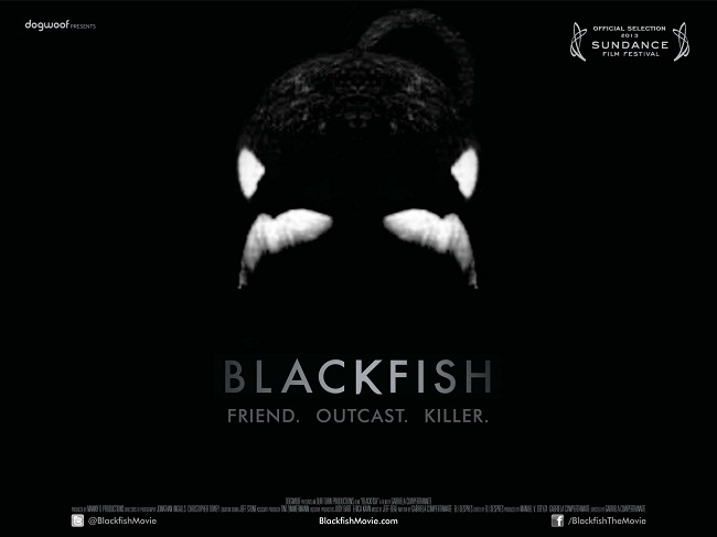 Blackfish 2013  Reference View  IMDb