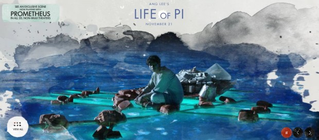 Life Of Pi banner skip crop