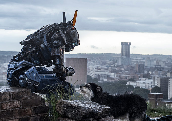 Chappie and Dog-680