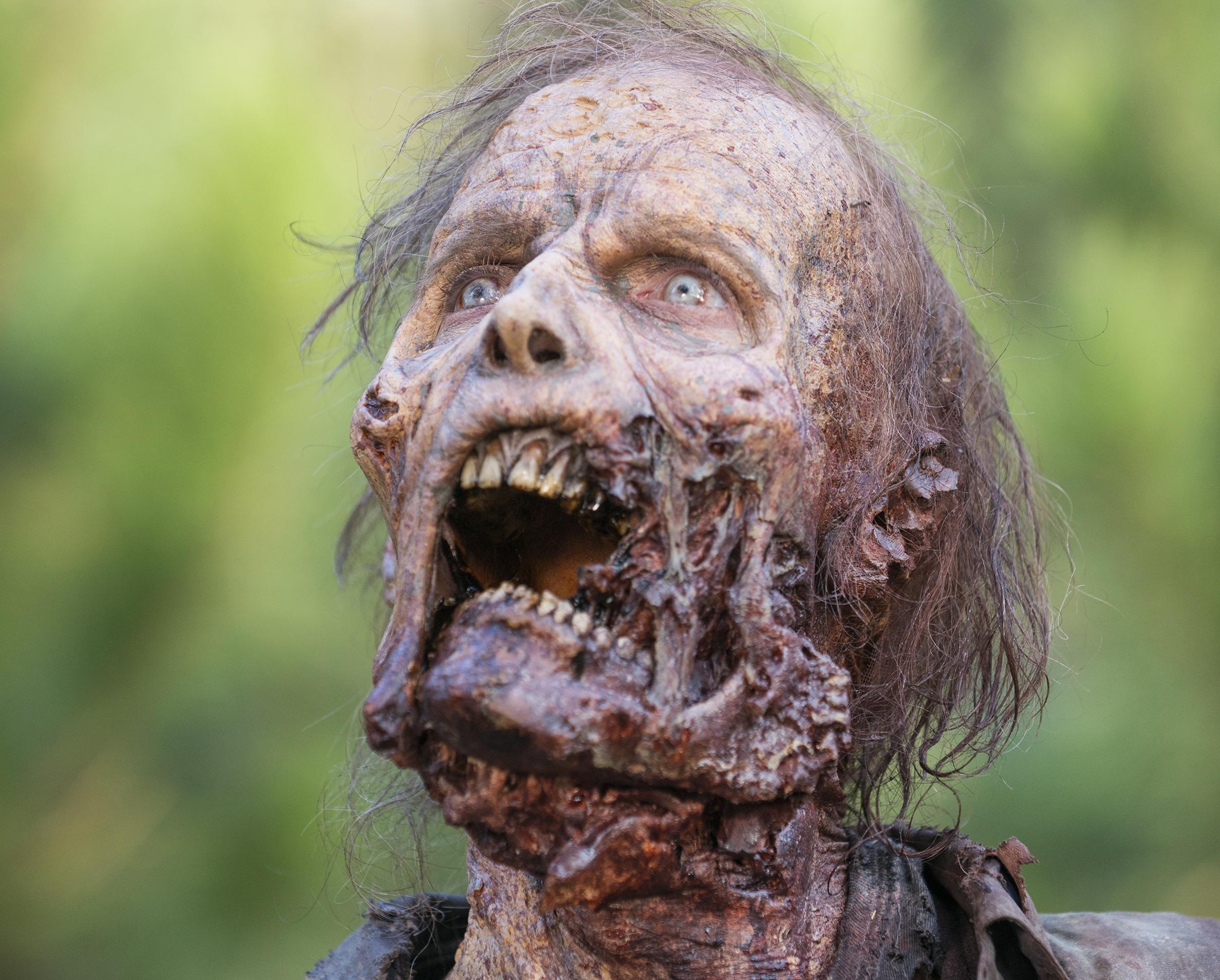 Bs Walking Dead 6