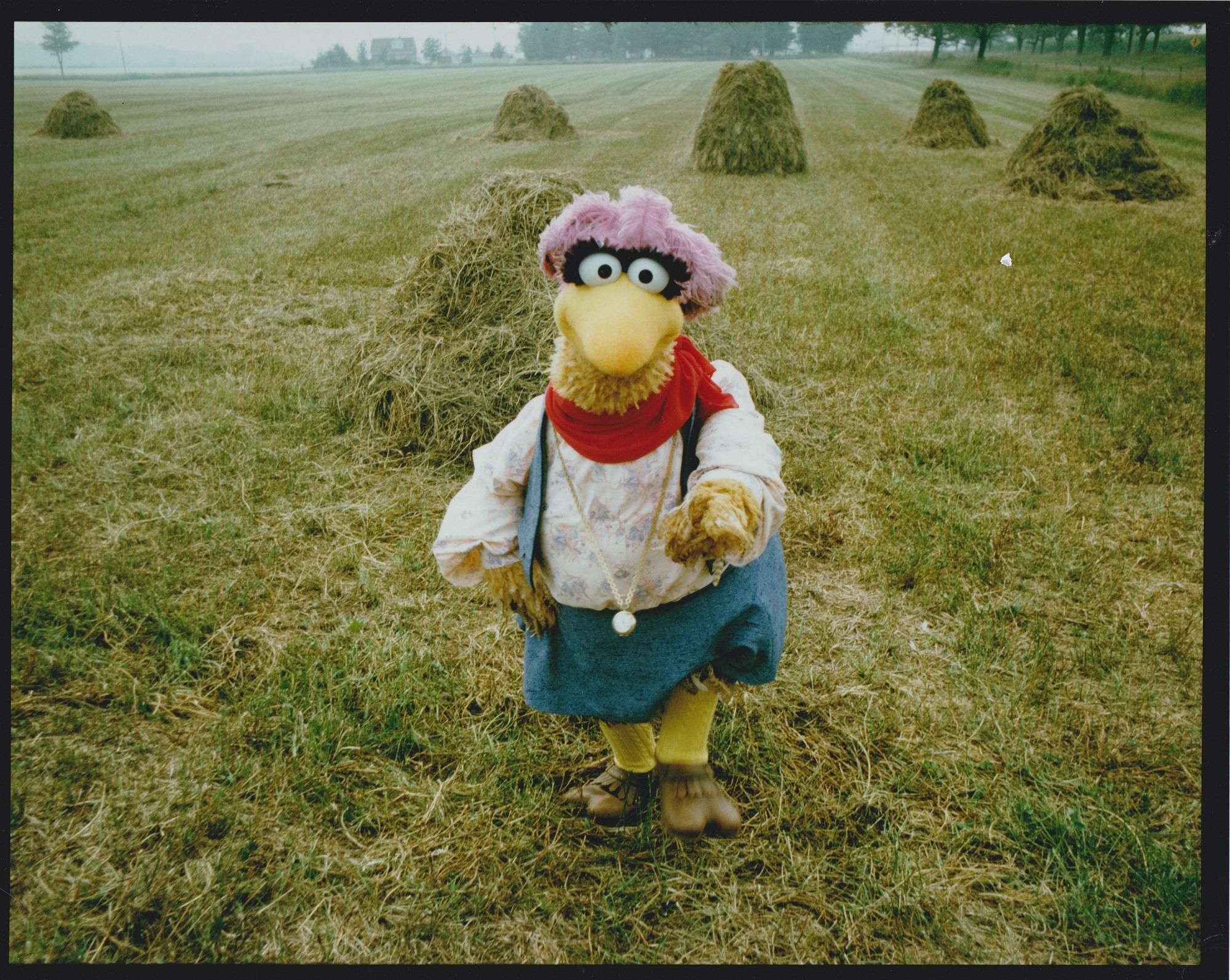 How Follow That Bird The First Sesame Street Film Became A