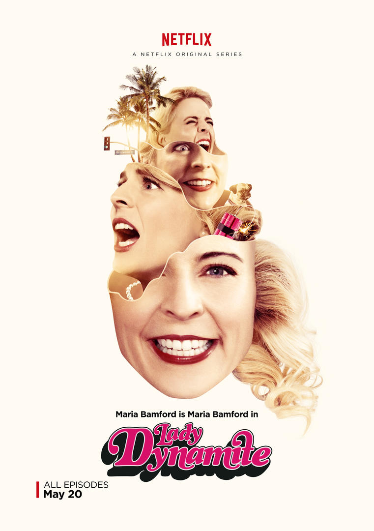 Image result for lady dynamite poster